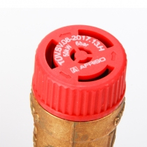 菲索锅炉安全组件6 bar-4